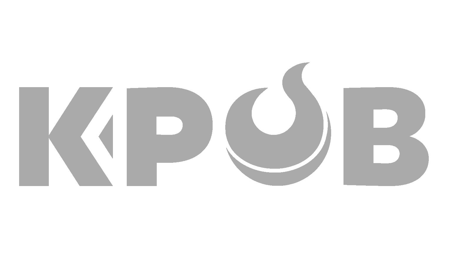 logo_bot13.png